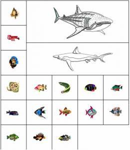 Морские животные и рыбы в DWG